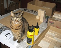 I just built my first skyline diffuser....-skyline-cat.jpg