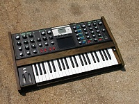 What's your favorite Voyager wood/panel combo?-voyager005.jpg