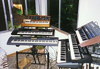 What's your favorite Voyager wood/panel combo?-moog3_202.jpg