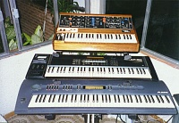 What's your favorite Voyager wood/panel combo?-moog2_116.jpg