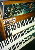 What's your favorite Voyager wood/panel combo?-moog1_201.jpg