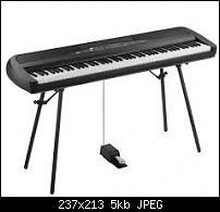 New digital piano-korg.jpeg