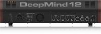 Behringer DeepMind 12-deepmind12d_p0cf7_rear.jpg