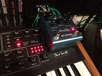 Prophet 08 PE: Worth getting at this point?-photo-19.9.2016-18.12.28.jpg