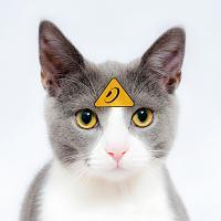 Behringer - The Cat-cat.jpg