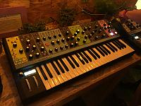 The Moog Experience (pictures)-moog-matriarch.jpg