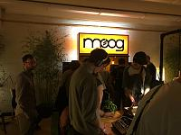 The Moog Experience (pictures)-moog-booth.jpg