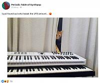 Cats & Synths Thread 2021<-c2cb5df1-750f-433d-98e4-9ee8ce416d4b.jpg