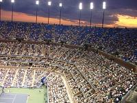 Tennis anyone?-133.jpg