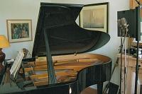 Six cardio SDC pairs on grand piano-dscf0620.jpg