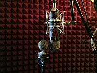 Violet Design GLOBE VINTAGE 47 vs Beesneez ARABELLA Producer Series-img_7354.jpg