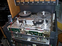 The GUTZ-800.jpg