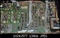 The GUTZ-p1050058.jpg