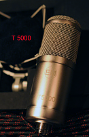 Video on the microphone?-t-5000-ldc-mic.png
