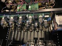 The GUTZ-a52e2760-5bbf-4e15-8ac4-256364e141c3.jpg