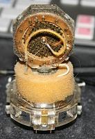 Condition of this U87 Capsule?-u87-capsule-back-jpeg1.jpg