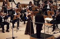 Best Mic to record solo Violin and Solo Cello-c700-stradivari.jpg