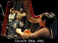Micing a harp-3-zigma-harp.jpg