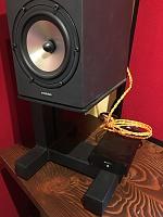 Amphion Amp100 VS Amp500 for One18's-mono-amp100.jpg