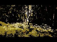 Art Gallery-flowers-forest-edge-1893.jpg-large1.jpg