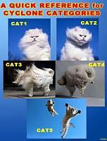 Wind Meter for outdoor Events-cat-1.jpg