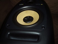 If the middle of a woofer on a monitor is dented, but not punctured...-krk2.jpg