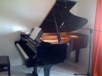 T.bone Sc140 stereo pair-piano1.jpg