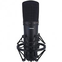 KAM instruments microphones-200911161150166268.jpg