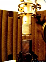 Affordable LDC Microphone With Multiple Voicings-img_1658.jpg
