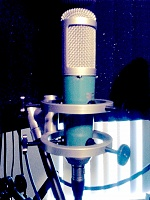 Affordable LDC Microphone With Multiple Voicings-cm1.jpg