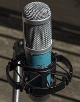 Affordable LDC Microphone With Multiple Voicings-cm1sm.jpg