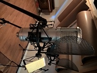 Affordable LDC Microphone With Multiple Voicings-shockmount.jpg