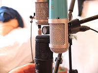Affordable LDC Microphone With Multiple Voicings-dscf1560.jpg