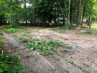 Defunk Studios - New Build-ground-clearing-before.jpg