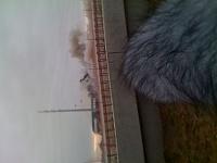 TX stadium implosion-img_0753.jpg