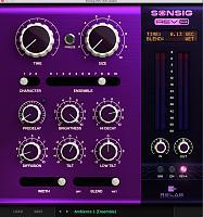 Relab SONSIG Rev A (Algorithmic Reverb)-relab-development-sonsig-reverb-.jpg