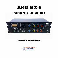 P2F Reverbs Releases AKG BX-5 Spring Reverb-akg-bx-5-spring-reverb-cover.jpg