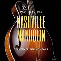 NASHVILLE MANDOLIN STRUMMER FOR KONTAKT By Past To Future-nashville-mandolin-cover.jpg