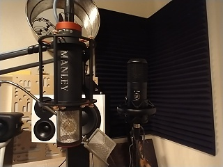 Warm Audio Announces WA-8000 Tube Condenser Microphone-img_20211014_201244843.jpg