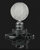 Cascade Microphones Fathead II