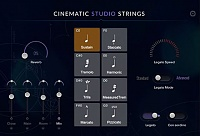 Cinematic Studios Cinematic Studio Strings
