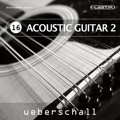 pettinhouse acoustic guitar