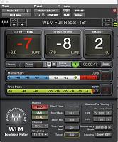 Mix Bus Processing-wlm-meter.jpeg