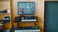 Welcome Sasse! (introduction)-sasse_5umodular-synths.jpg