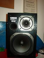 Yamaha Promix 01?-im002818.jpg