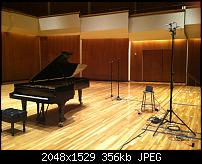 Offset spaced tail pair on grand piano?-202756_665821751259_100011758_o.jpg