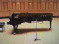 What is the box hanging from the bottom of the grand piano??-54f551a1-dcb4-497f-b916-f866753a1f6d.jpg