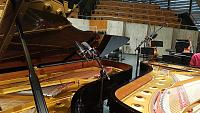 Grand piano tracking -- the lid is killing me!-mozart5.jpg