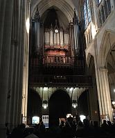Pipeorgan - dropped the mics ...-stcl.jpg