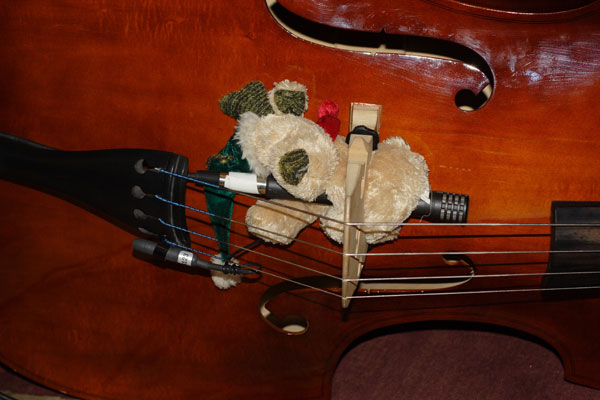 recording upright acoustic bass help please page 2. Black Bedroom Furniture Sets. Home Design Ideas